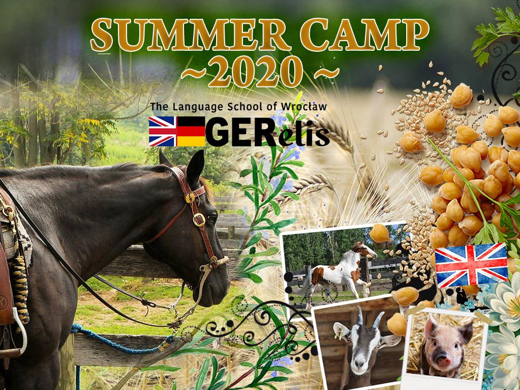 Summer Camp 2020, w tym roku większość zajęć na świeżym powietrzu!