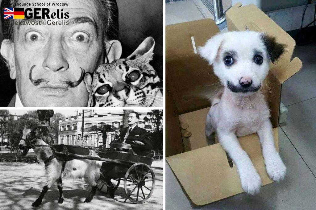 Ciekawostka GERelis #3. Salvador Dali i zwierzaki.